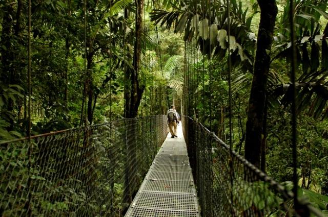 costa-rica-hanging-bridge